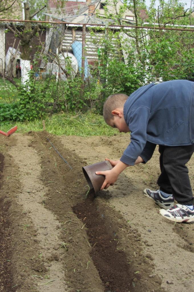 vrt gnojenje humusal
