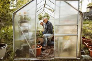 Homosexuellt par i litet växthus